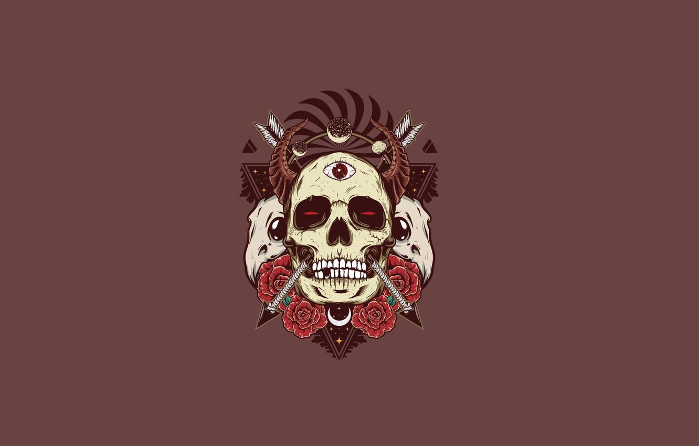 Wallpaper Skull Roses Horns Skull Arrows Images For