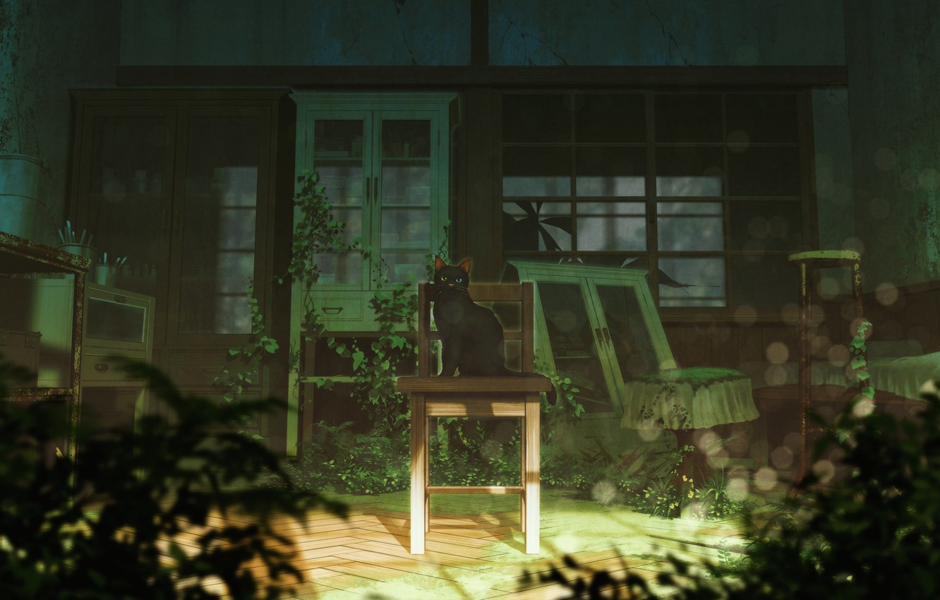 Photo wallpaper Look, Cat, Anime, Chair, Art, Abandoned house