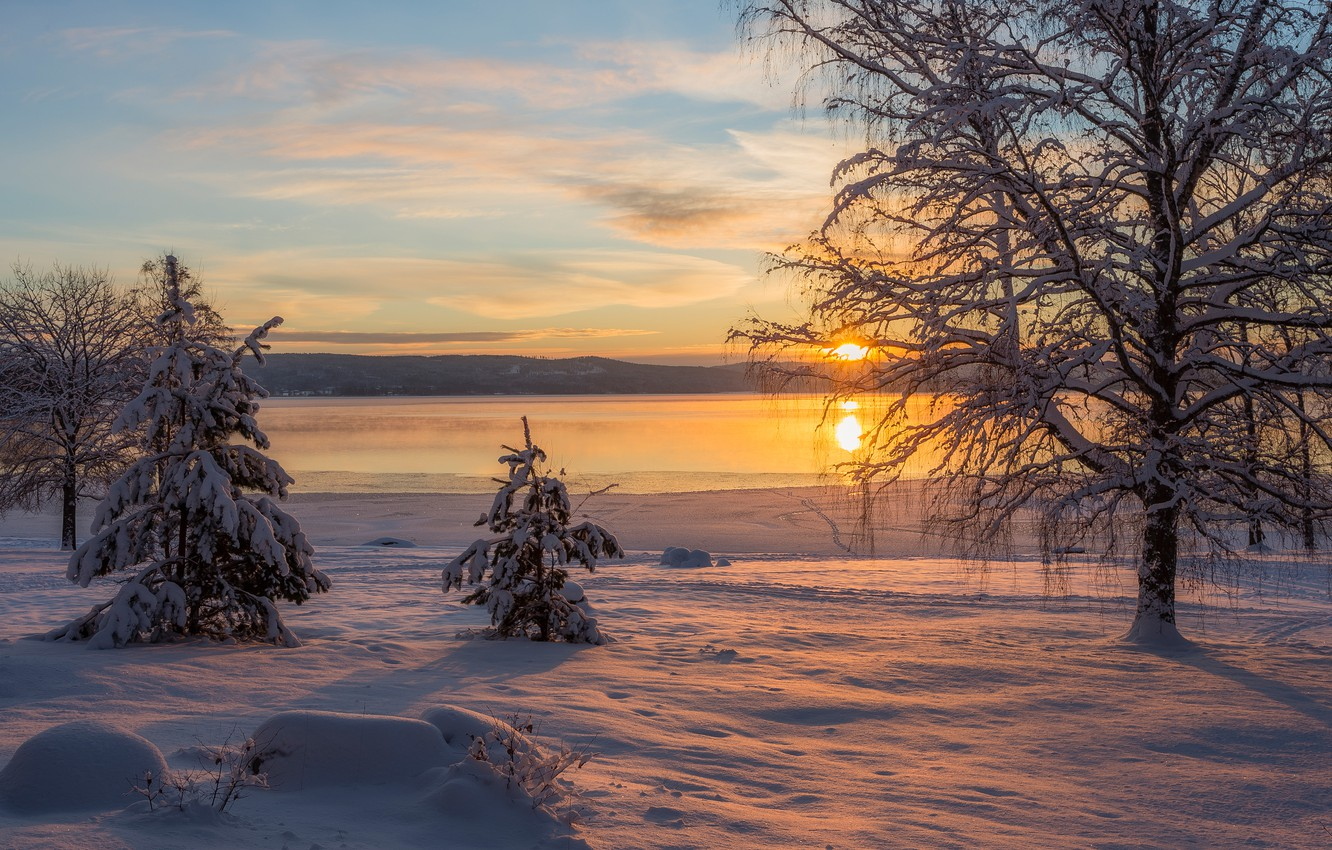Wallpaper Winter Frost The Sun Clouds Snow Sunset Nature River Tree Shore The Evening Christmas Trees Images For Desktop Section Pejzazhi Download