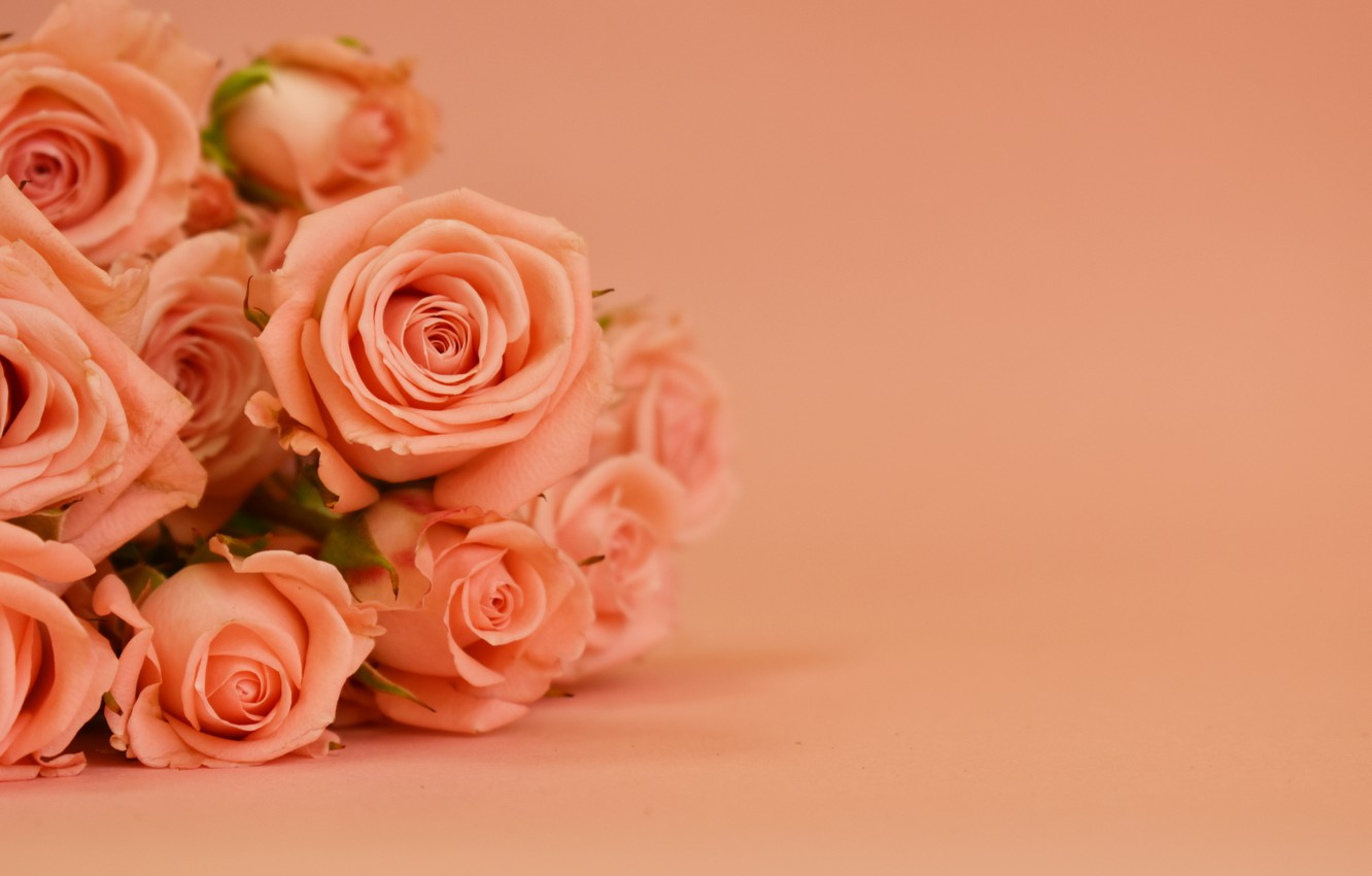 Photo wallpaper background, roses, bouquet, beautiful, Victoria Dunn