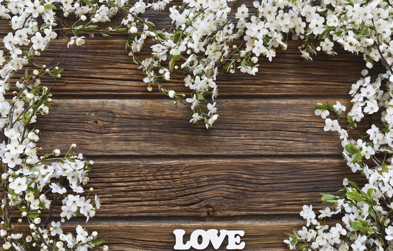 Photo wallpaper flowers, background, spring, LOVE