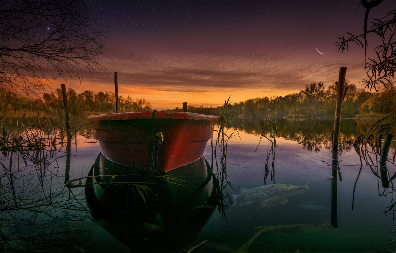 Photo wallpaper grass, fish, landscape, sunset, nature, lake, boat, forest, Bank