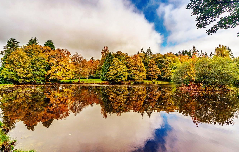 Photo wallpaper autumn, trees, reflection, river, garden, Ireland, Botanic Gardens Dublin