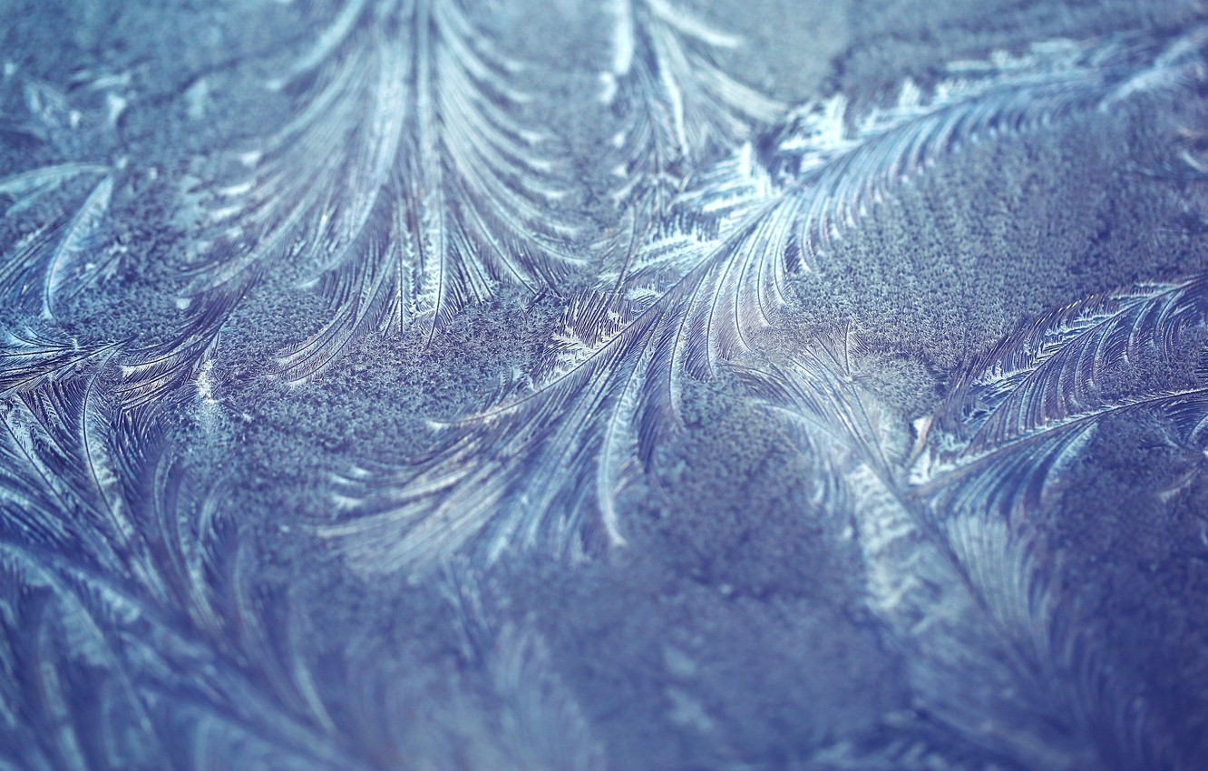 Photo wallpaper frost, macro, pattern, texture, frost