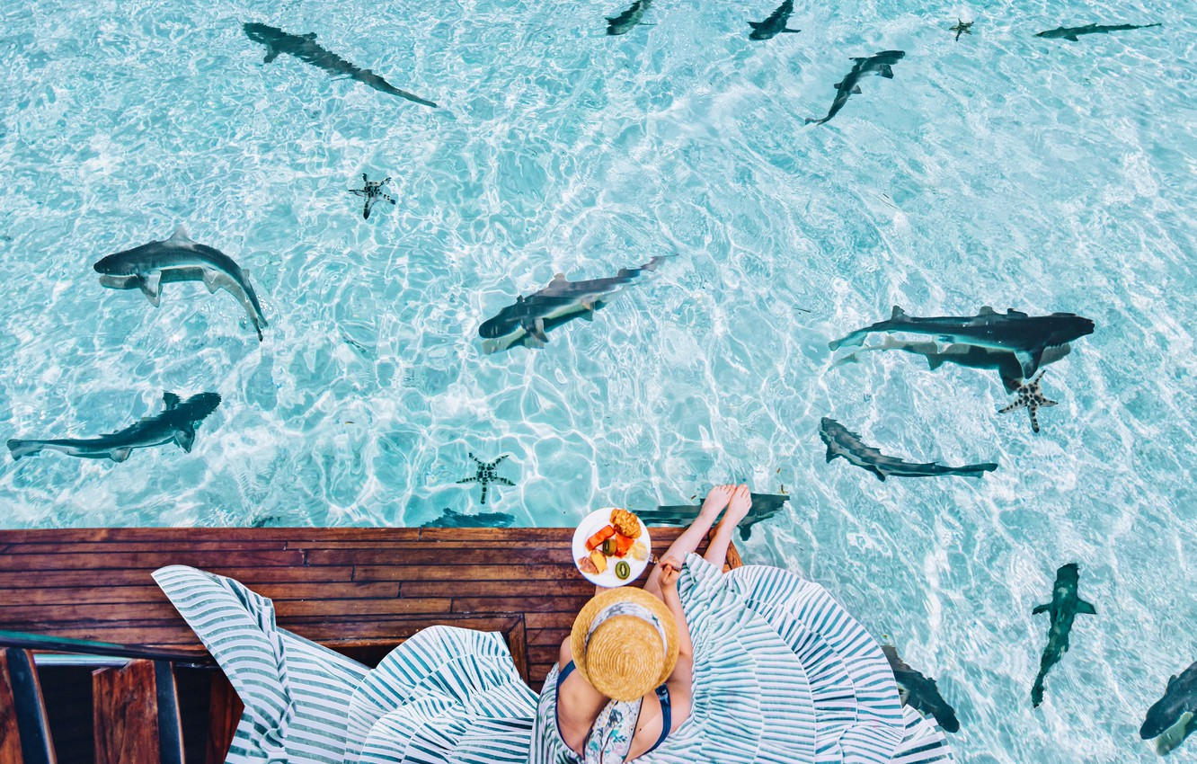 Photo wallpaper water, girl, mood, the ocean, the situation, Breakfast, dress, hat, sharks, Kristina Makeeva