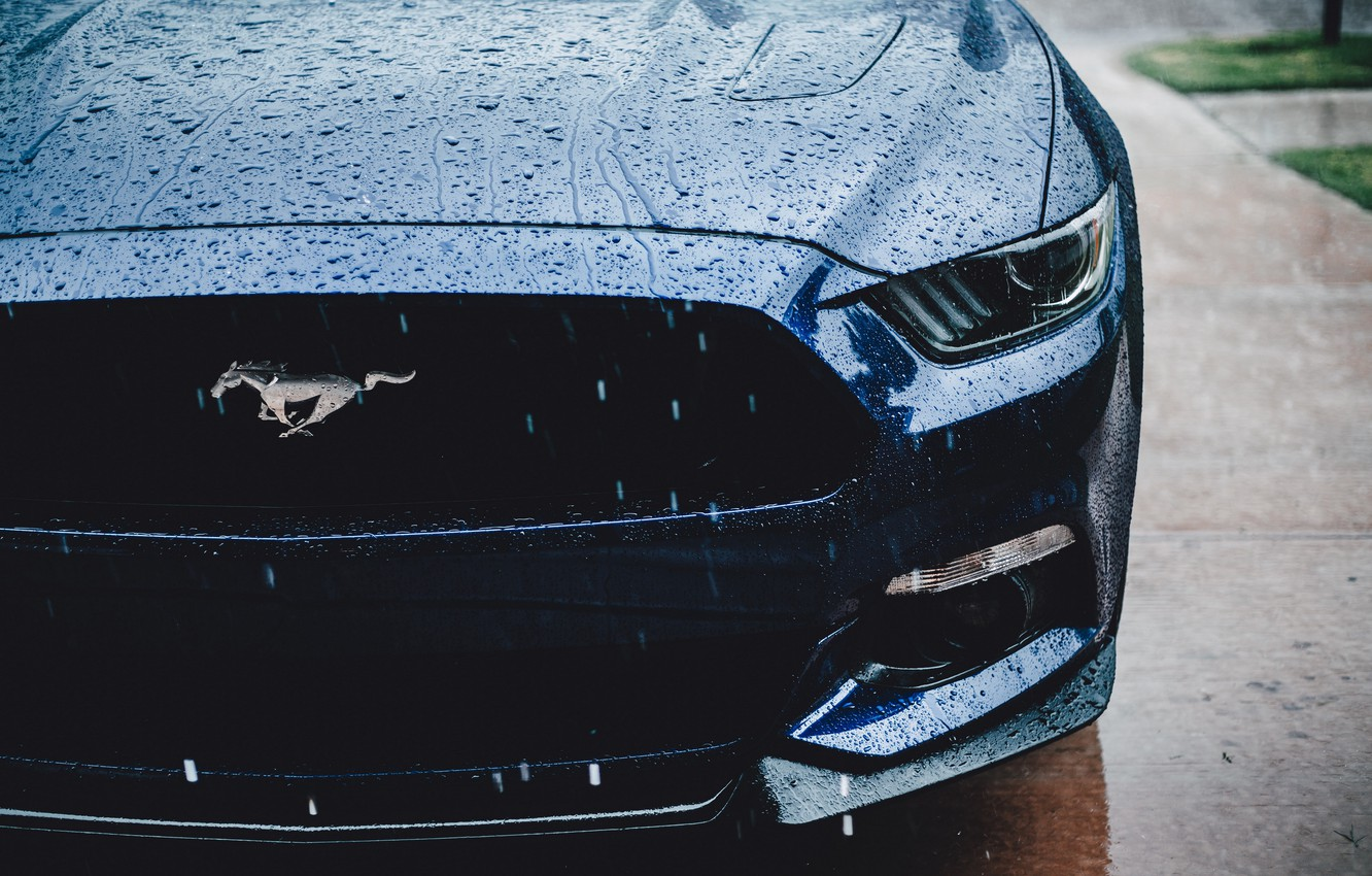 Photo wallpaper Ford Mustang, muscle car, water drops
