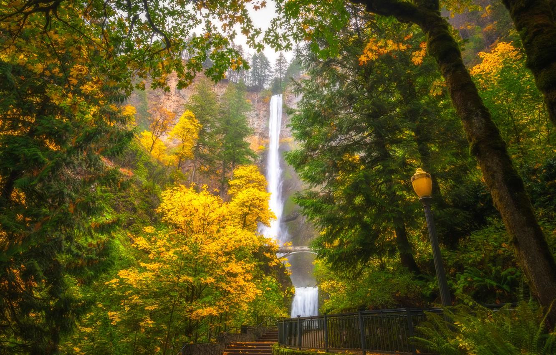 Photo wallpaper autumn, trees, waterfall, Oregon, lantern, Oregon, Columbia River Gorge, Multnomah Falls, The Columbia river gorge, …
