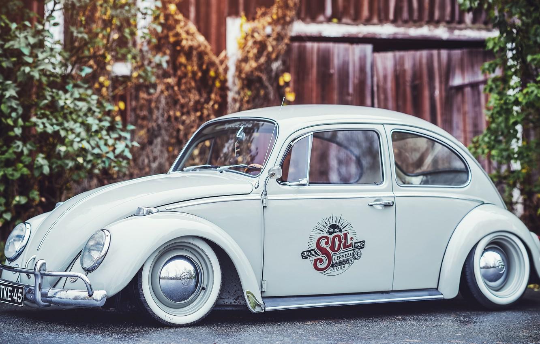 Photo wallpaper Volkswagen, Beetle, Beetle, Volkswagen Beetle, The folkvagena