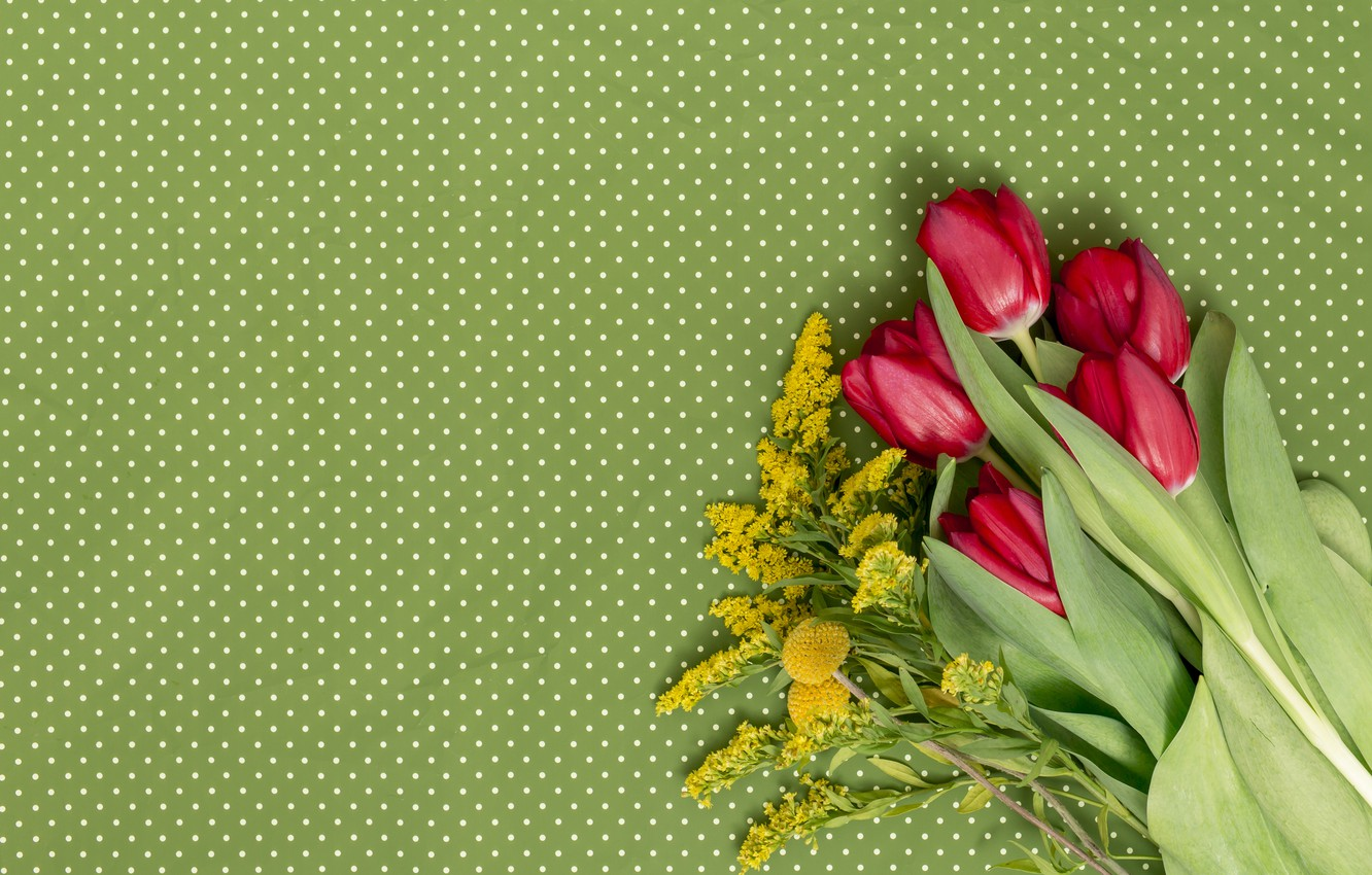Photo wallpaper flowers, bouquet, tulips, red, red, flowers, tulips, spring