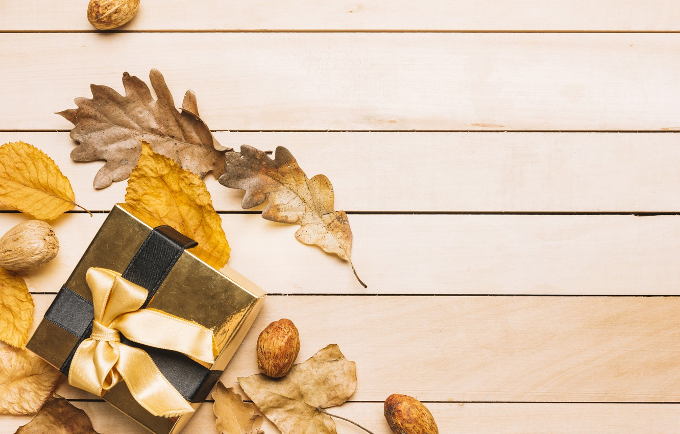 Photo wallpaper autumn, leaves, background, tree, gift, colorful, tape, nuts, wood, background, autumn, leaves, present, gift