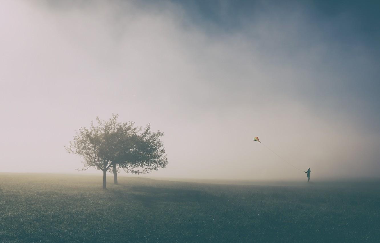 Photo wallpaper trees, people, kite, trees, man, kite, Uschi Hermann