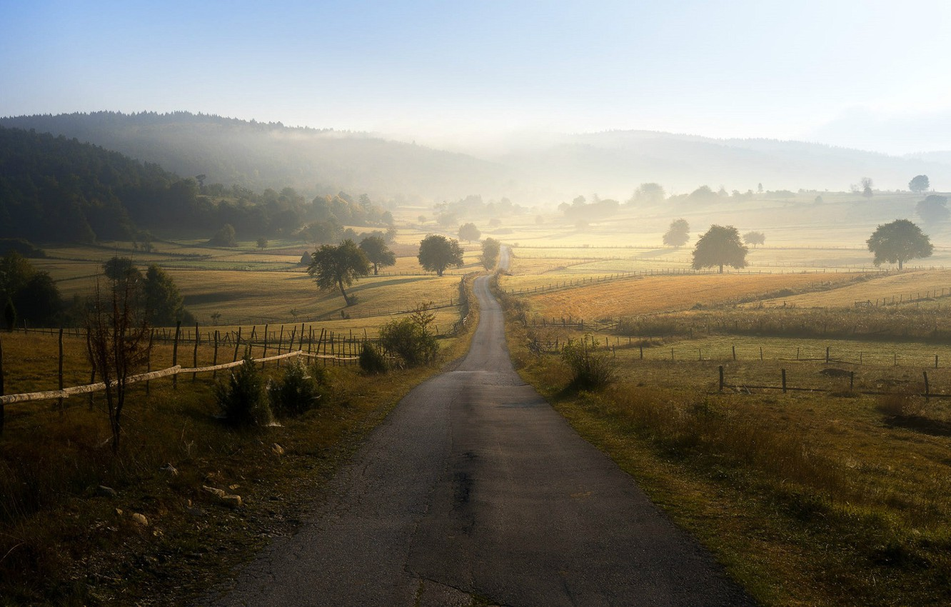 Photo wallpaper field, morning mist, Bosnia and Herzegovina, the road into the distance