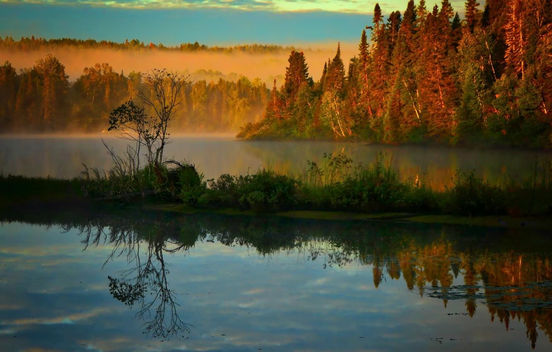 Photo wallpaper autumn, landscape, nature, fog, lake, morning, Canada, forest, Bank, QC