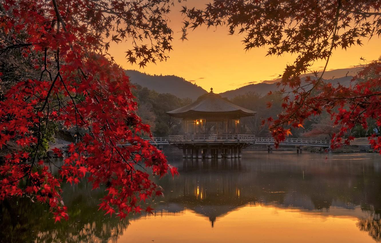 Photo wallpaper autumn, leaves, pond, Japan, gazebo