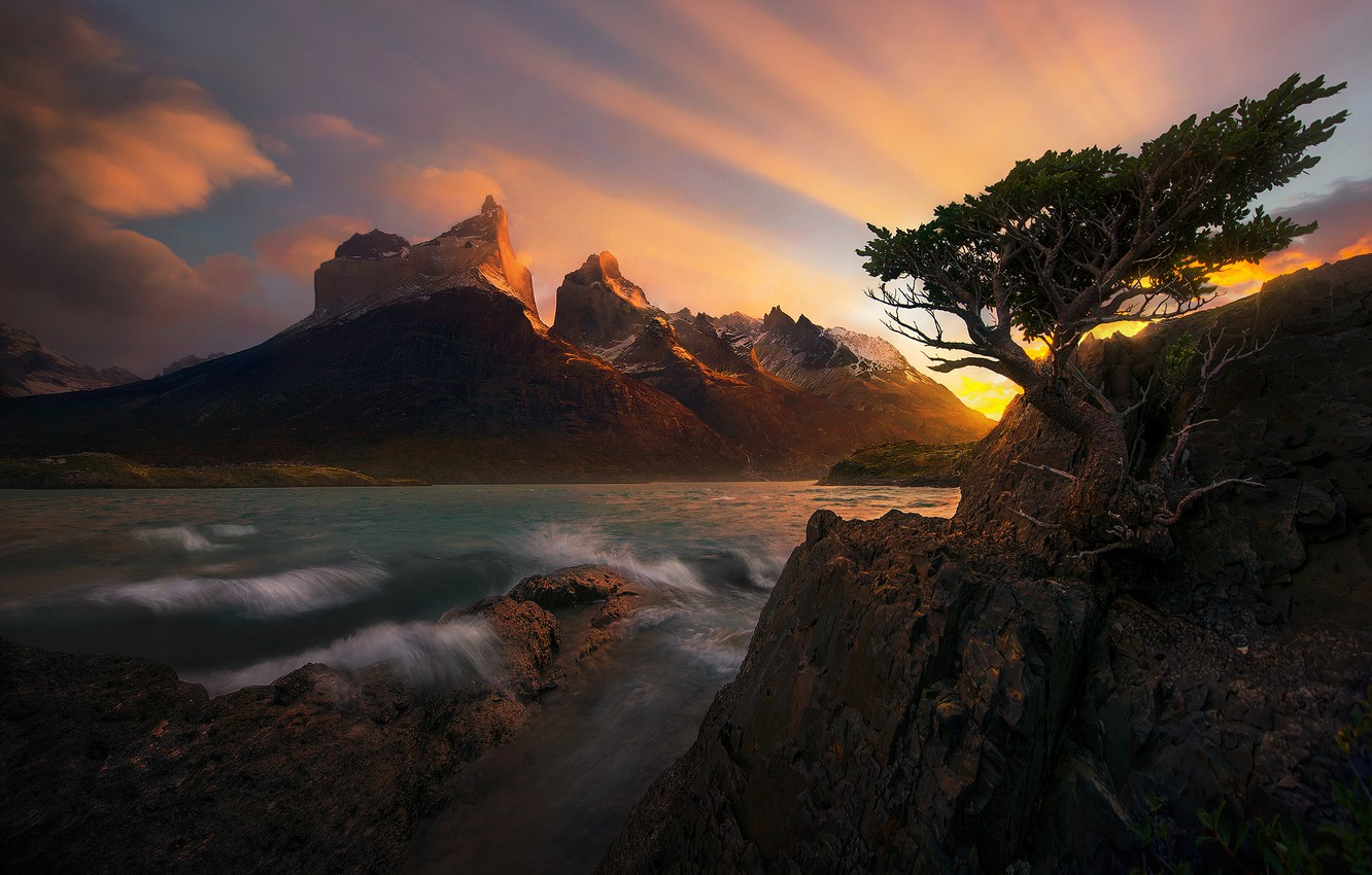 Photo wallpaper sea, landscape, sunset, nature, tree, rocks, pine, the fjord, Patagonia, Marc Adamus