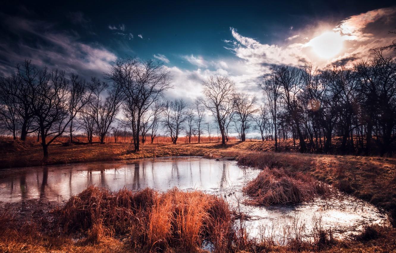 Photo wallpaper autumn, trees, nature, lake