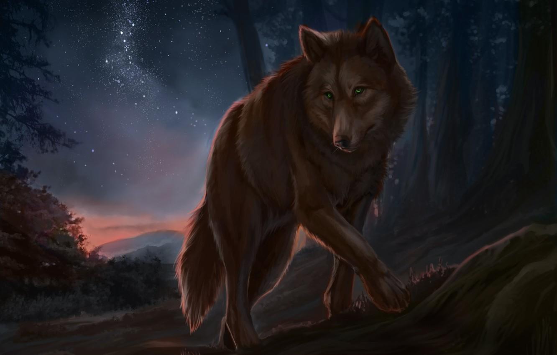 Photo wallpaper night, wolf, artwork