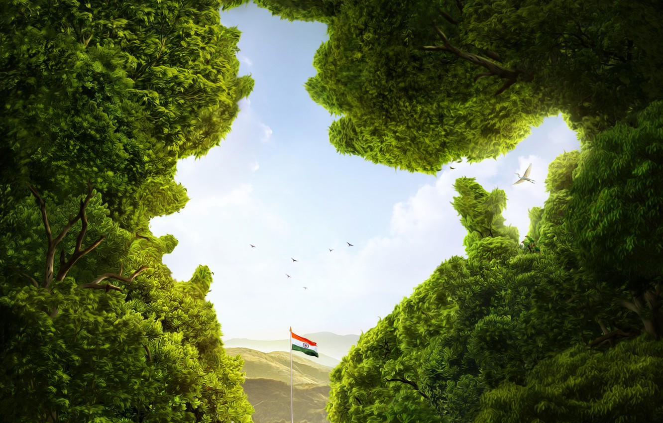 Wallpaper Greens The Sky Trees Mountains Birds Nature India Flag Art India Images For Desktop Section Raznoe Download