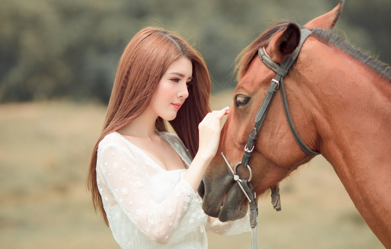 Photo wallpaper look, face, girl, nature, face, background, each, horse, sweetheart, horse, portrait, hands, friendship, beauty, profile, …