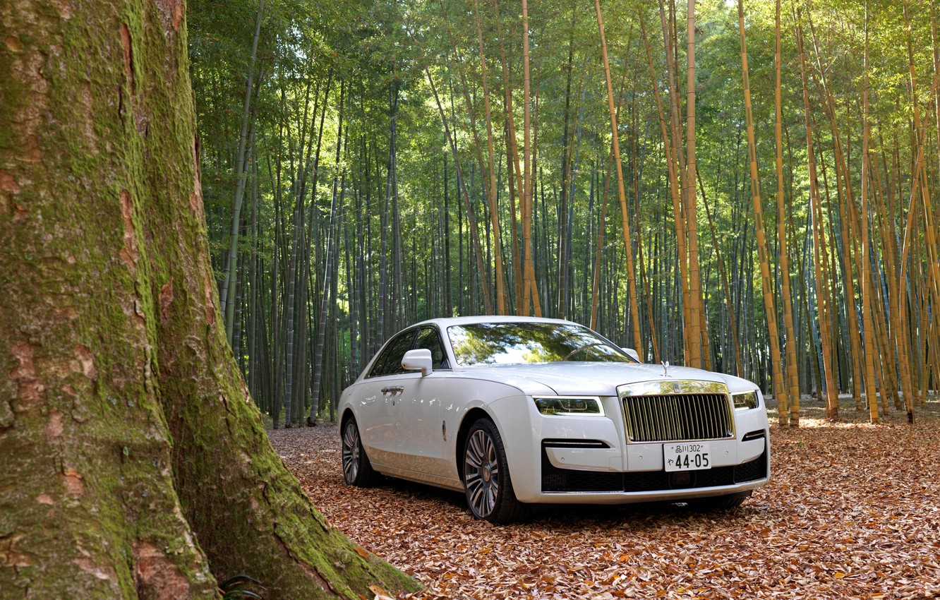 Photo wallpaper forest, white, nature, Rolls-Royce, Rolls-Royce Ghost
