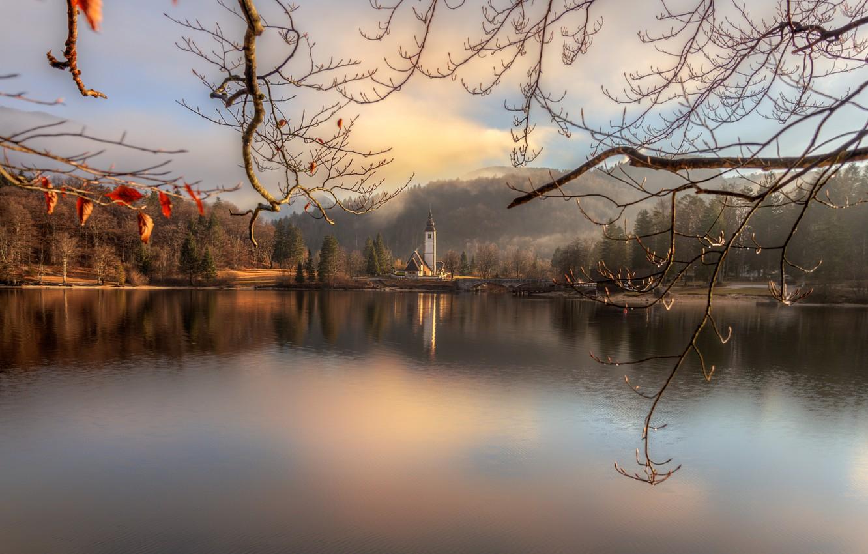 Photo wallpaper landscape, branches, bridge, nature, lake, Church, island, forest, Slovenia, Bohinj, Gordeev Edward, Eduard Gordeev, Ed …