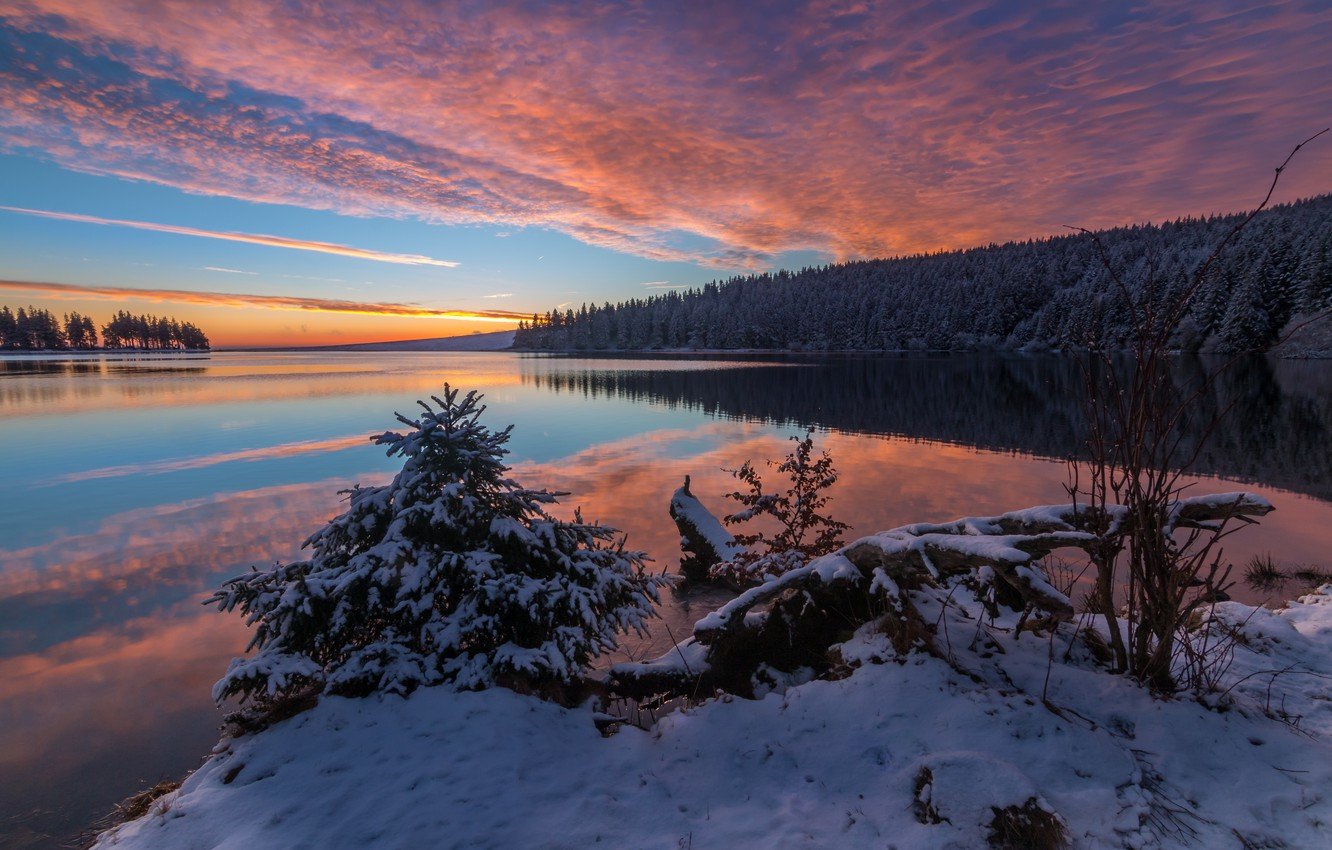 Photo wallpaper winter, forest, snow, landscape, nature, river, dawn, morning, Bank