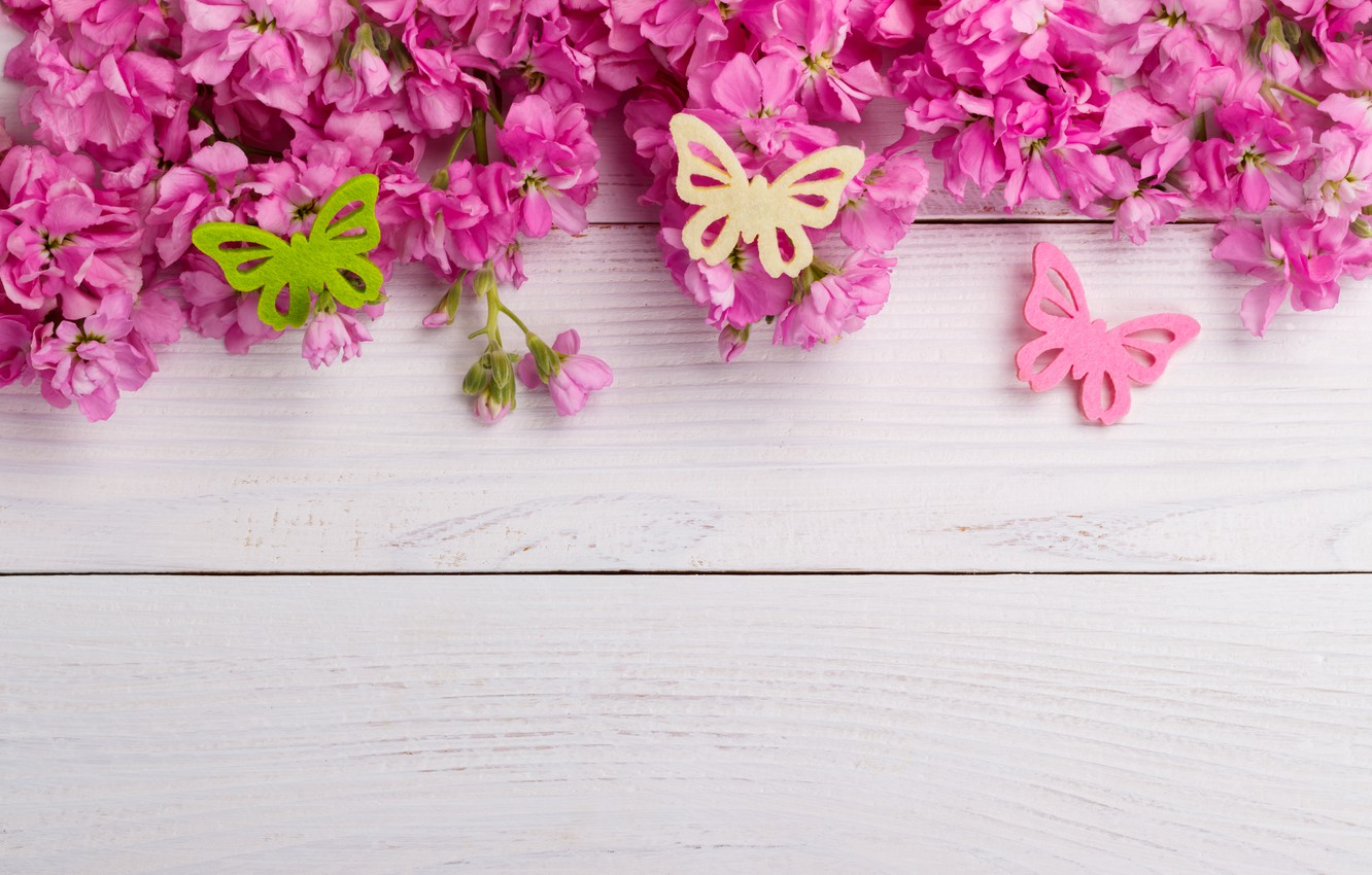 Wallpaper Butterfly Flowers Pink Wood Pink Flowers