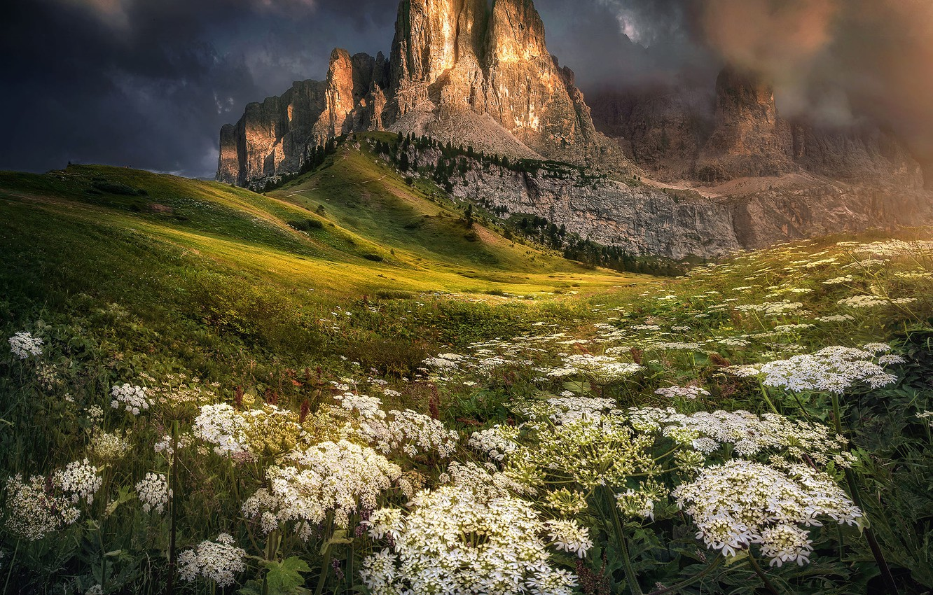 Photo wallpaper landscape, mountains, clouds, nature, vegetation, Italy, The Dolomites