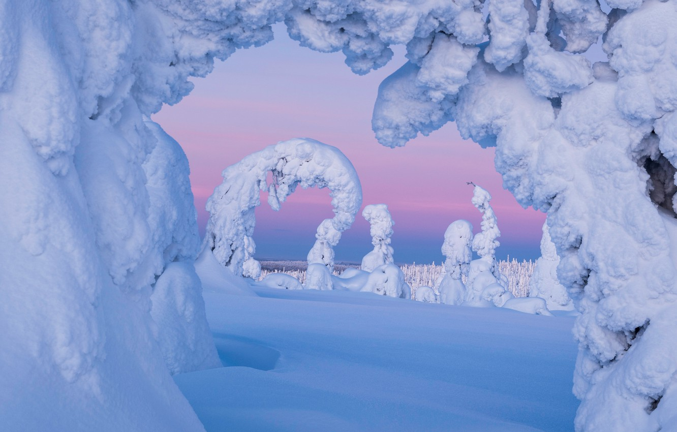 Wallpaper winter, snow, trees, the snow, Finland, Finland, Lapland ...