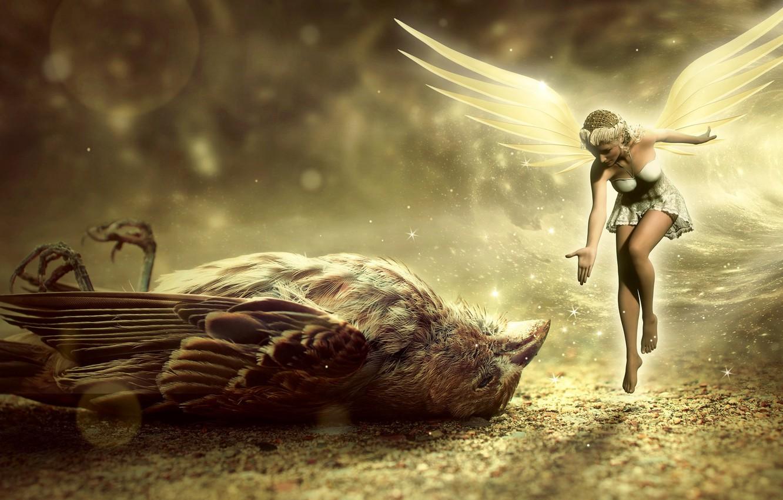 Photo wallpaper fairy, Sparrow, girl, bird