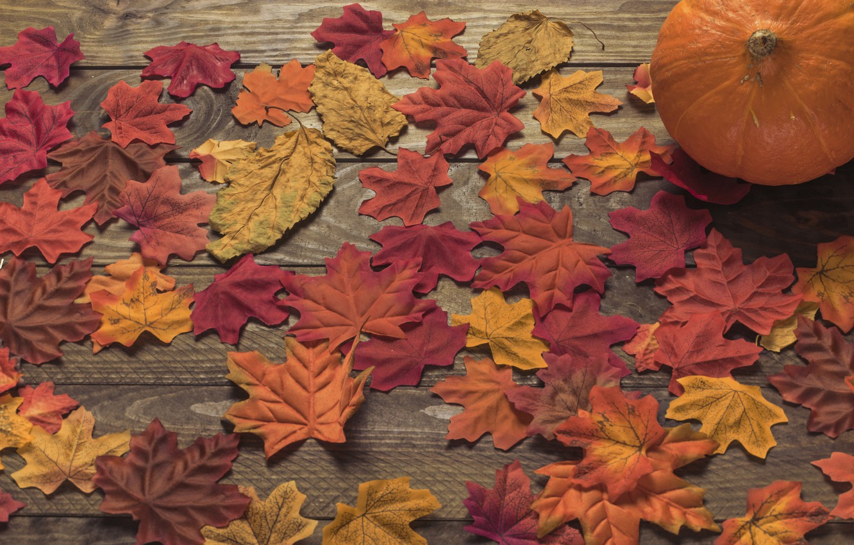 Photo wallpaper autumn, leaves, background, tree, colorful, Board, wood, background, autumn, leaves, autumn, maple