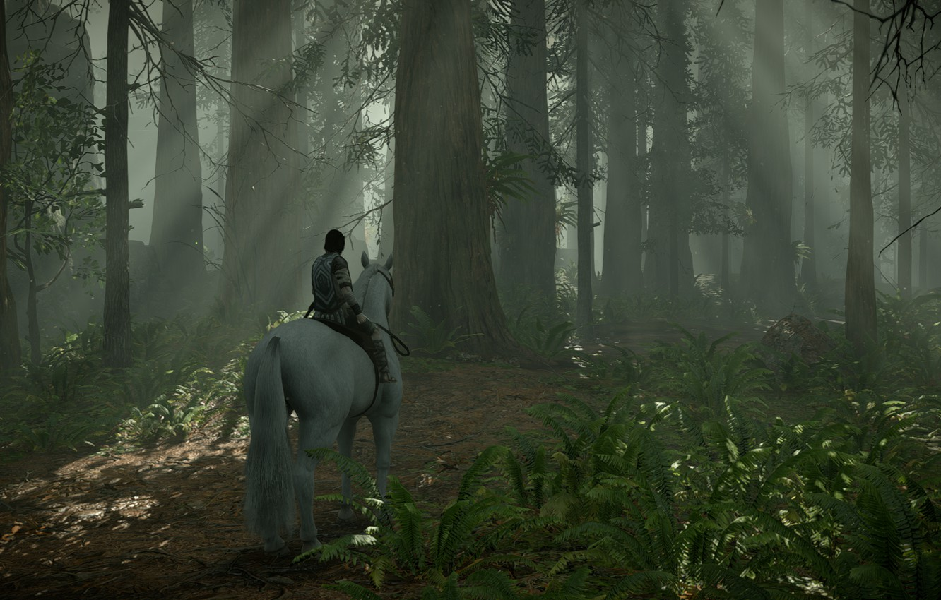 Photo wallpaper forest, rays, trees, Shadow of the Colossus, In the shadow of the colossus