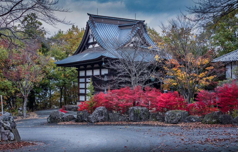 Photo wallpaper road, autumn, trees, design, stones, home, Japan, the bushes, Numata