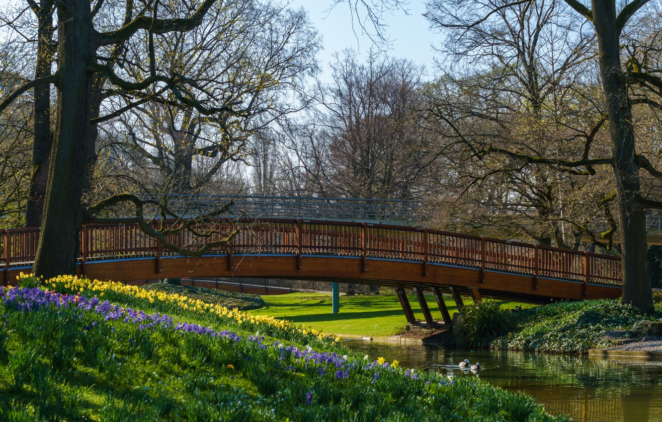 Photo wallpaper the sun, trees, flowers, bridge, pond, Park, duck, spring, Germany, Karlsruhe