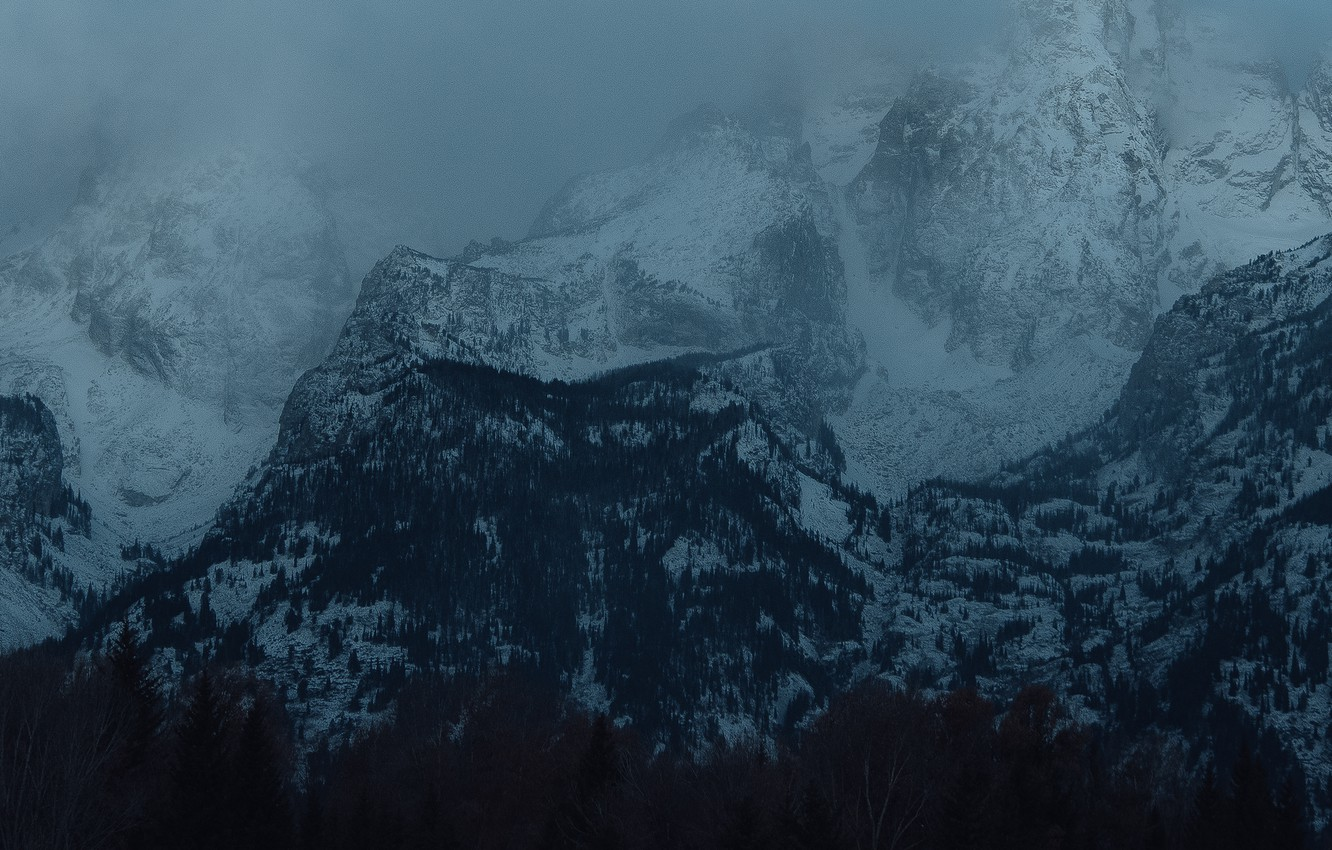 Photo wallpaper winter, forest, snow, trees, mountains, nature, rocks, twilight