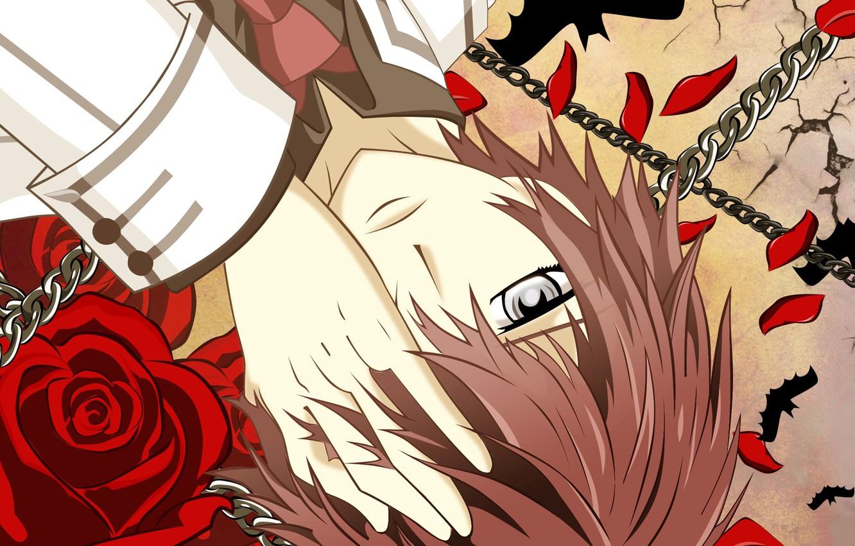 Photo wallpaper hand, petals, tie, guy, red rose, chain, school uniform, art, vampire knight, knight-vampire, matsuri hino, …