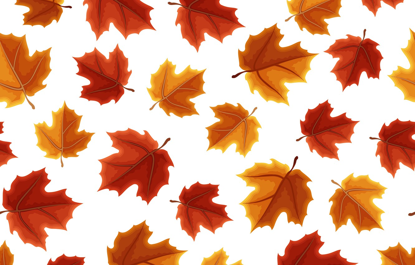 Photo wallpaper autumn, leaves, background, colorful, maple, background, autumn, pattern, leaves, autumn, maple, seamless