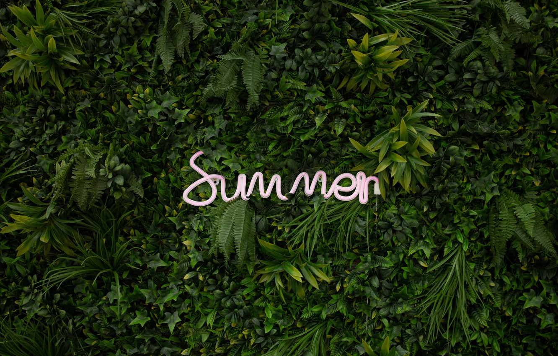 Photo wallpaper summer, leaves, plants, neon, summer, neon