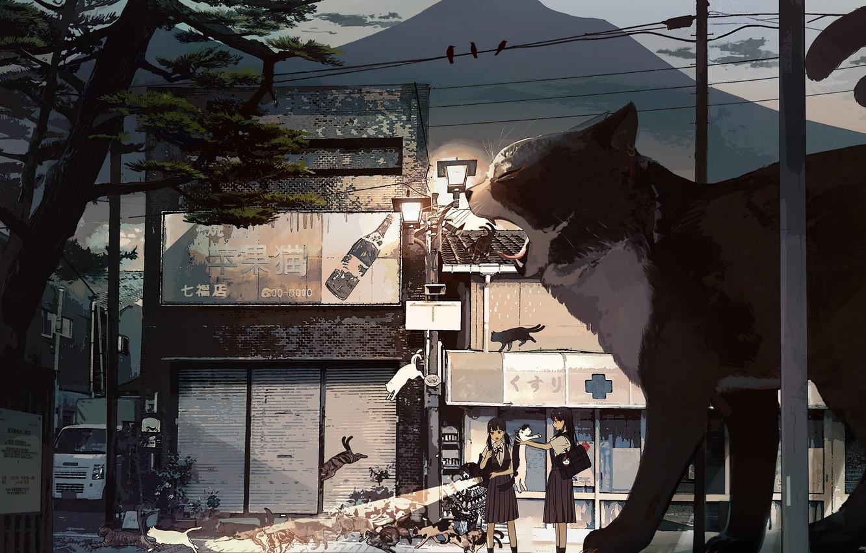 Photo wallpaper cat, cats, girls, street, giant