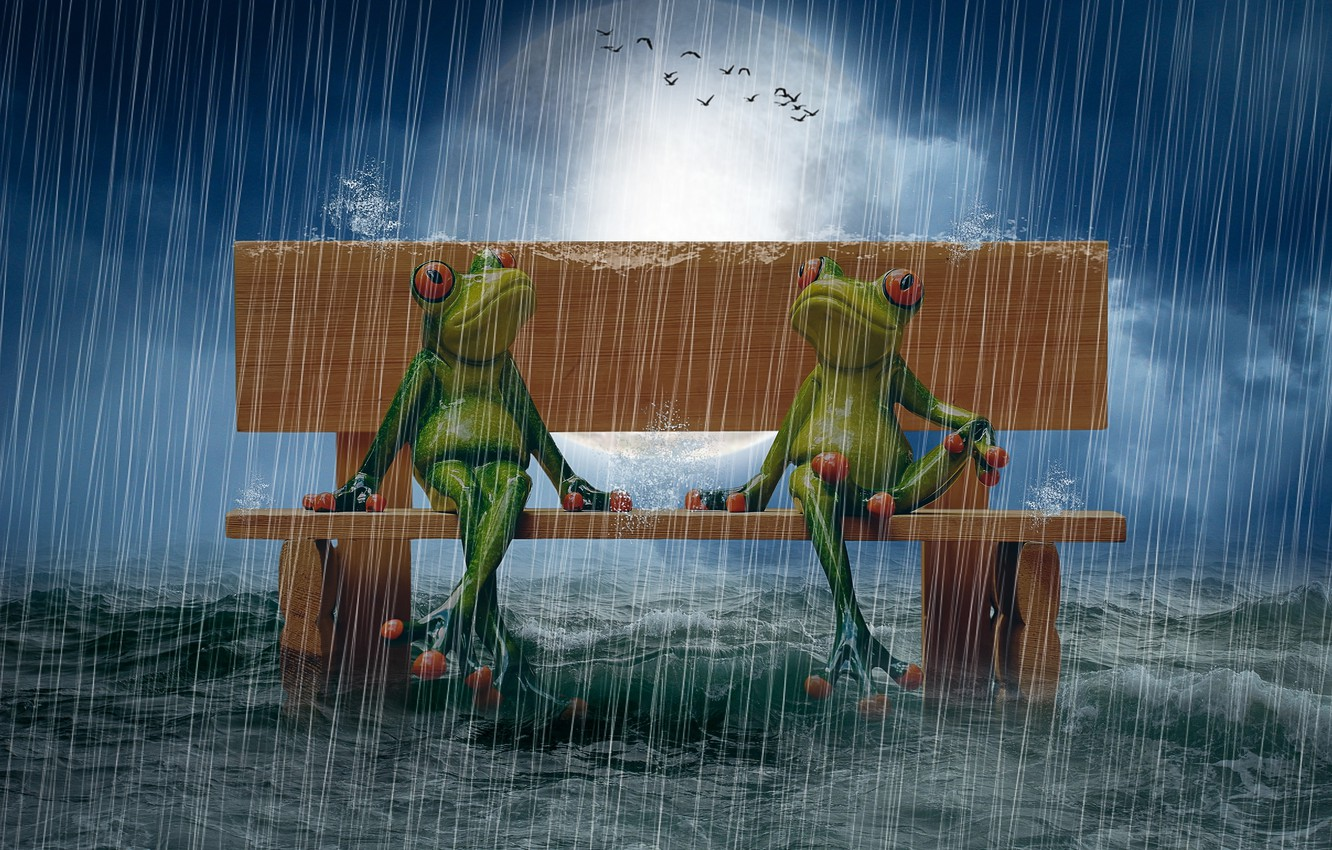 Photo wallpaper sea, bench, rain, The moon, photo manipulation, puppet, birds in the sky, frogs