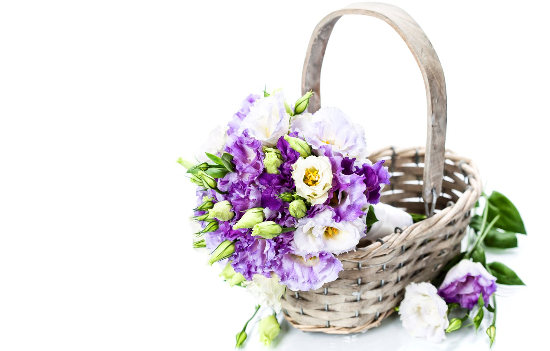 Photo wallpaper basket, Eustoma, Natalia Klenova