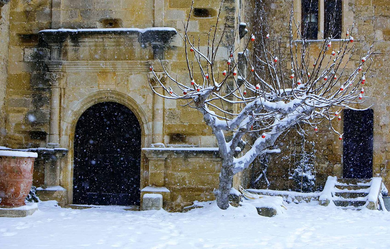 Photo wallpaper tree, France, Christmas, yard, Vaucluse, the castle of Lourmarin