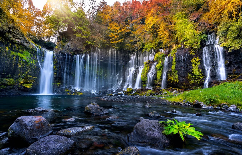 Photo wallpaper autumn, leaves, trees, waterfall, colorful, forest, nature, autumn, leaves, tree, waterfall