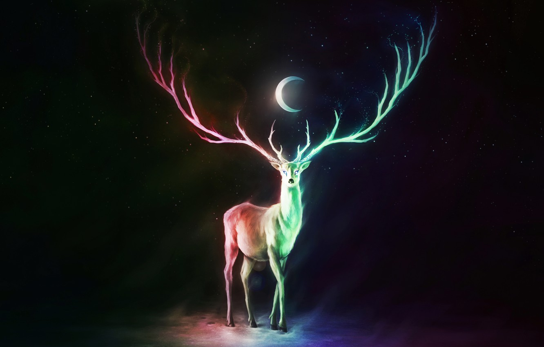 Photo wallpaper colorful, moon, fantasy, horns, stars, animal, digital art, artwork, fantasy art, Deer