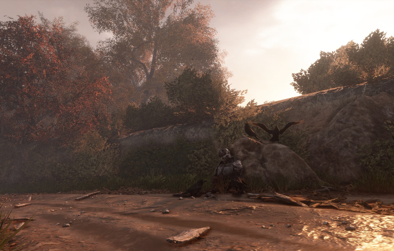Photo wallpaper crows, knight, the corpse, a plague tale: innocence