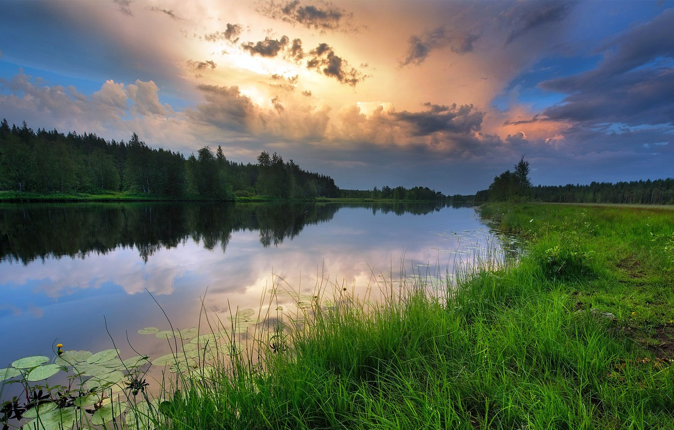 Photo wallpaper forest, the sky, grass, sunset, reflection, river, beautiful, Bank, water lilies