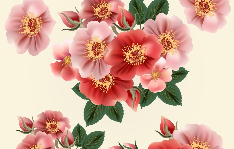 Photo wallpaper flowers, flower, coloful