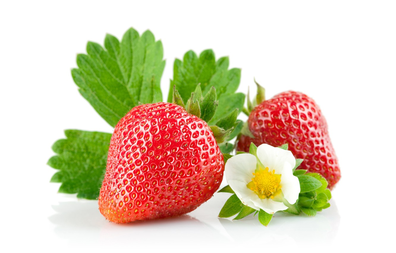 Photo wallpaper strawberry, white background, leaves, flowers