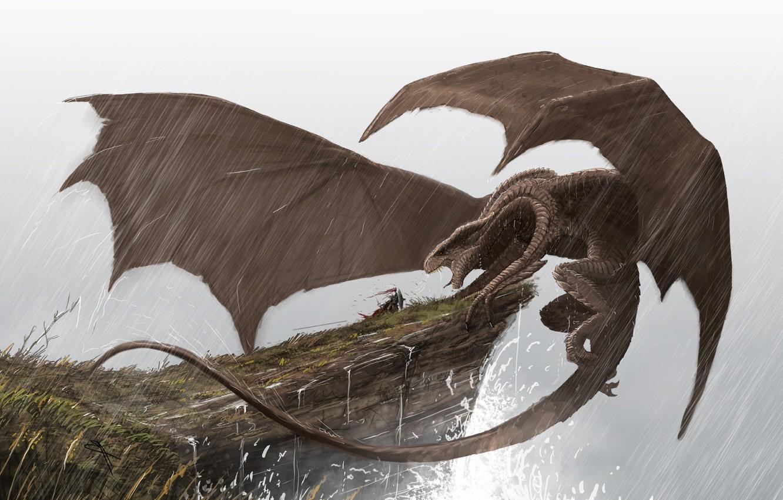 Photo wallpaper fantasy, Dragon, rain, horns, wings, battle, artwork, warrior, fantasy art, creature, knight, cliff