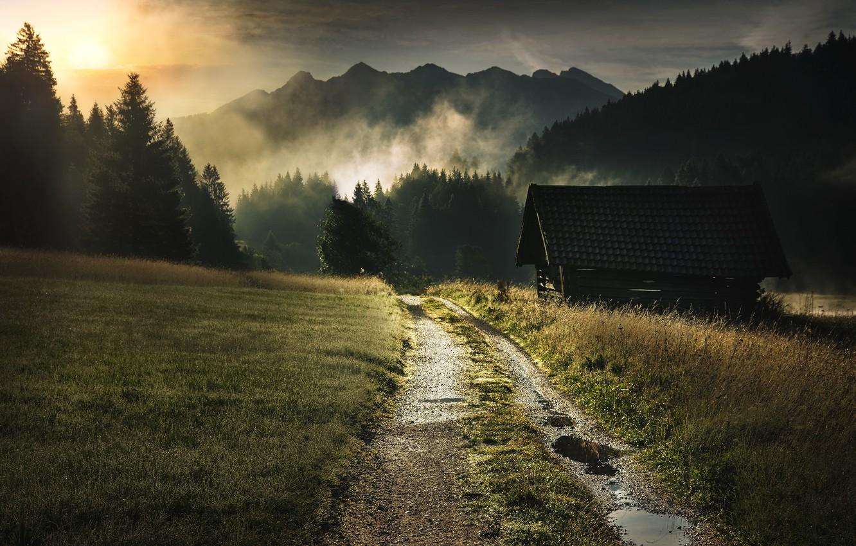 Photo wallpaper road, fog, morning